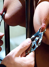 Nipples, Bribing an Officer: Business Woman Arrested and Ass Fucked in Bondage!