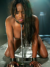 Black Pics: Sexy black girl is bound and fucked by a machine