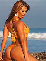 Fitness Beauties - Hot Babes